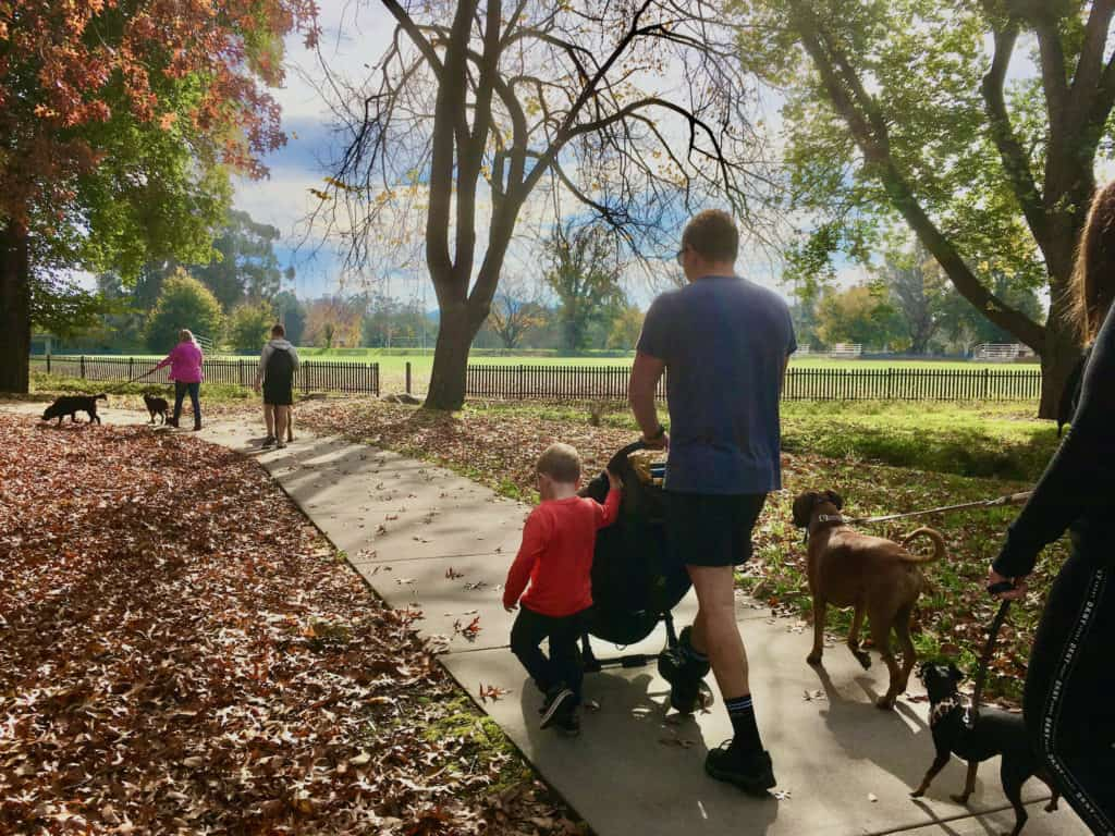 family pushing pram with dogs through park